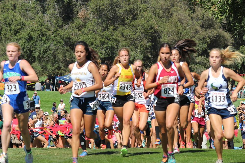 St Francis Cross Country Fourth At Stanford Invite St Francis